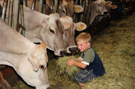 Familienurlaub am Bauernhof - Füttern