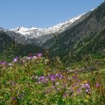 Ridnaun Südtirol