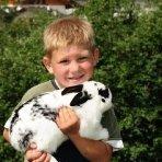 Familienurlaub am Bauernhof - Hase