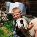 Familienurlaub am Bauernhof - Kinder